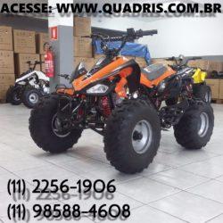 125cc aro 8 quadris