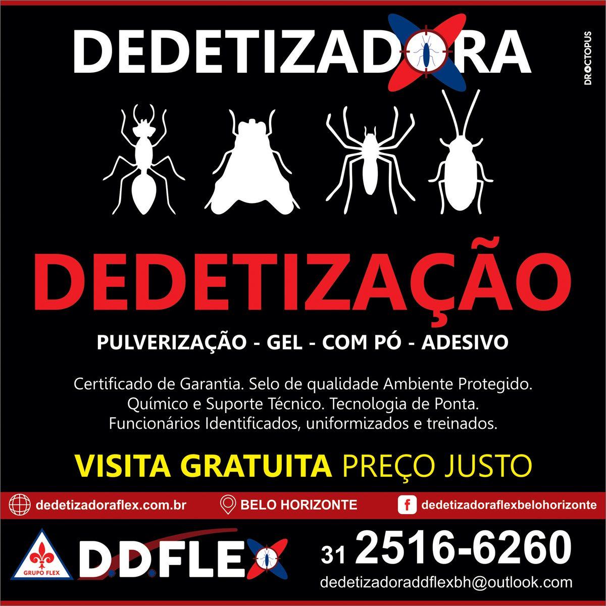ddflex-BH