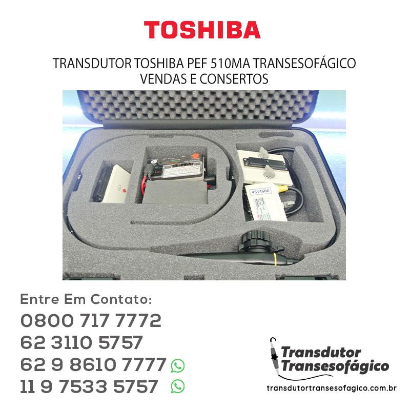 TOSHIBA-PEF-510MA-TRANSESOFAGICO