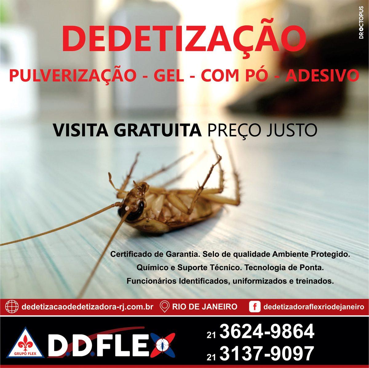ddflex-RIO