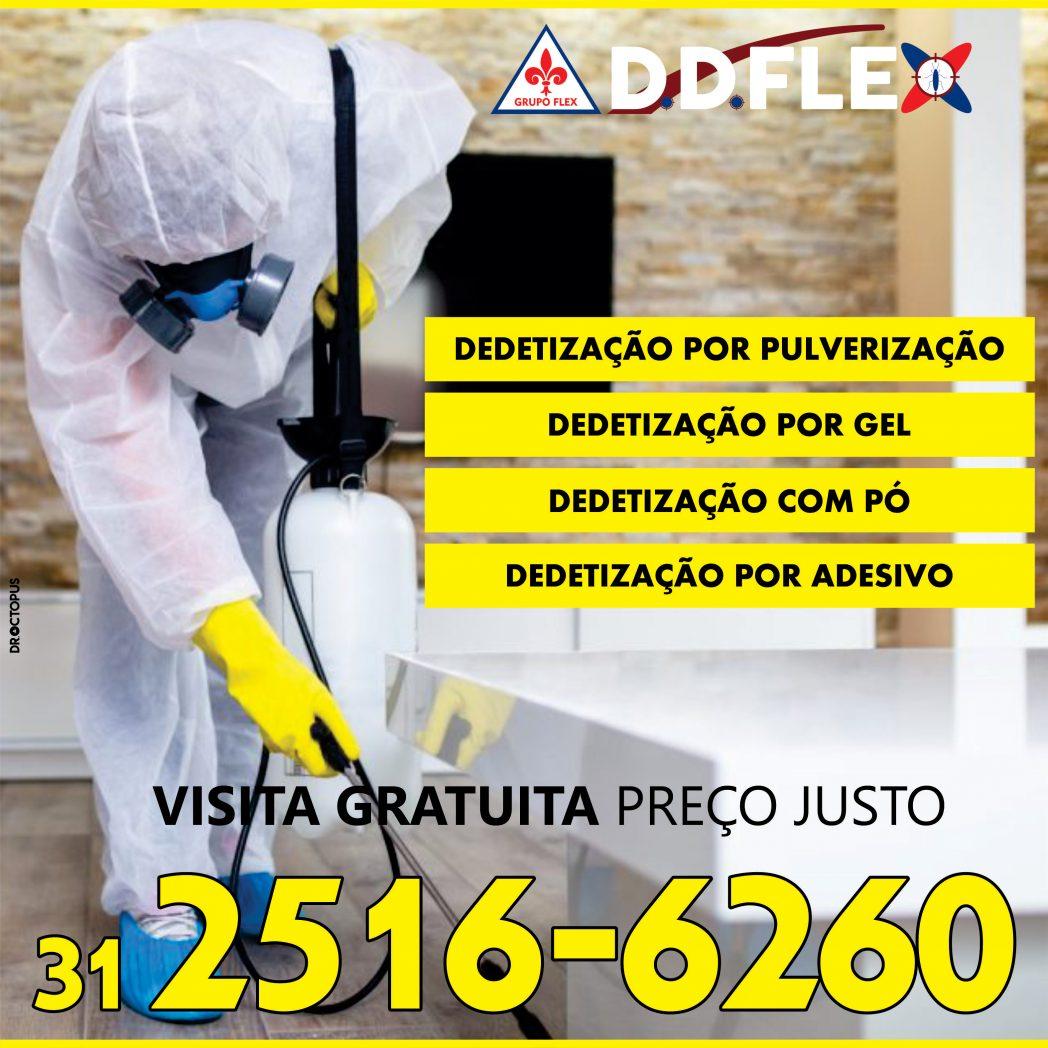 ddFLEX-2020-BH