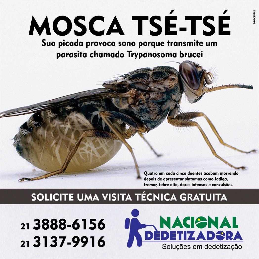 nacional-mosca