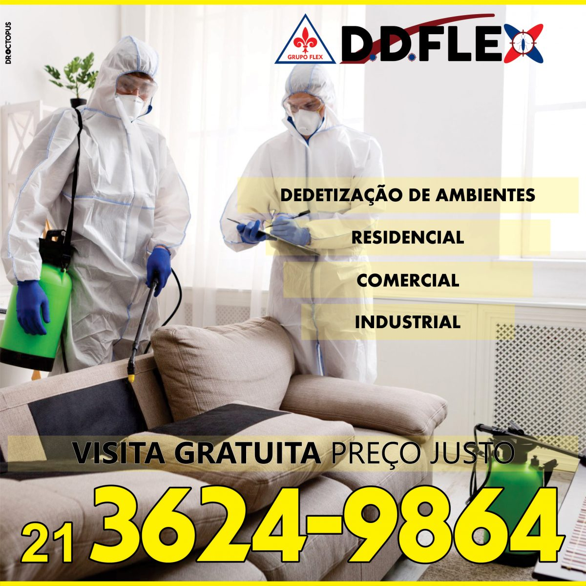 ddFLEX-2020-RJ