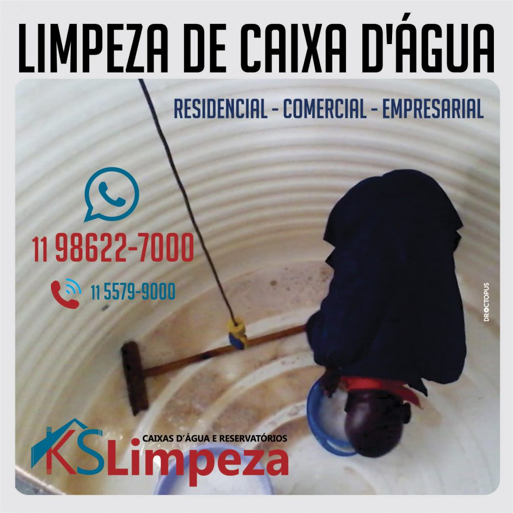 ks limpeza 2
