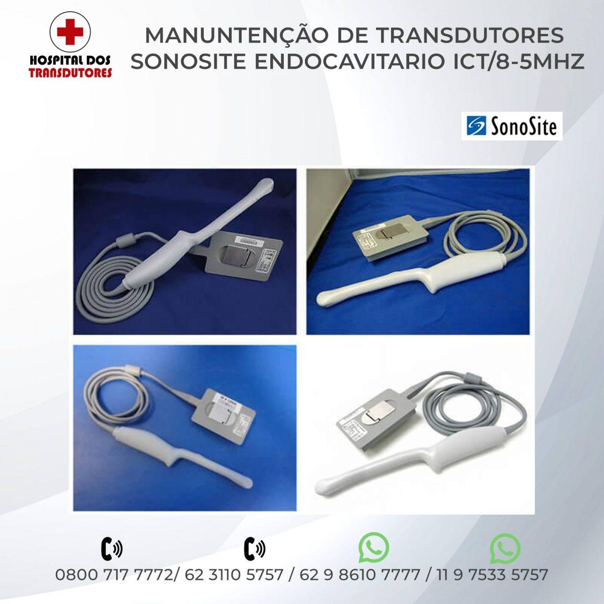 6-TRANSDUTOR-SONOSITE-ENDOCAVITARIO